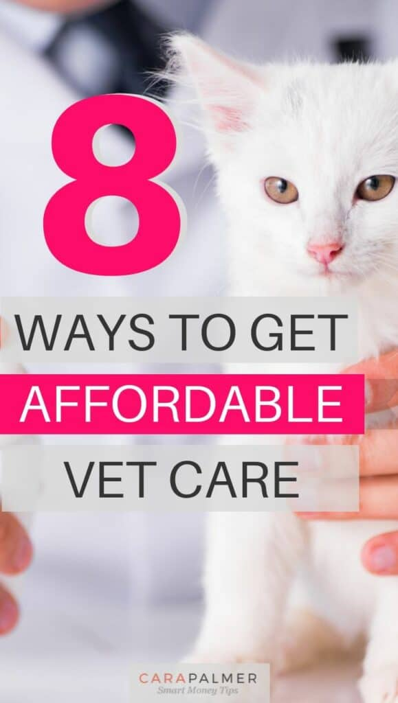 Find Affordable Vetrinary Care
